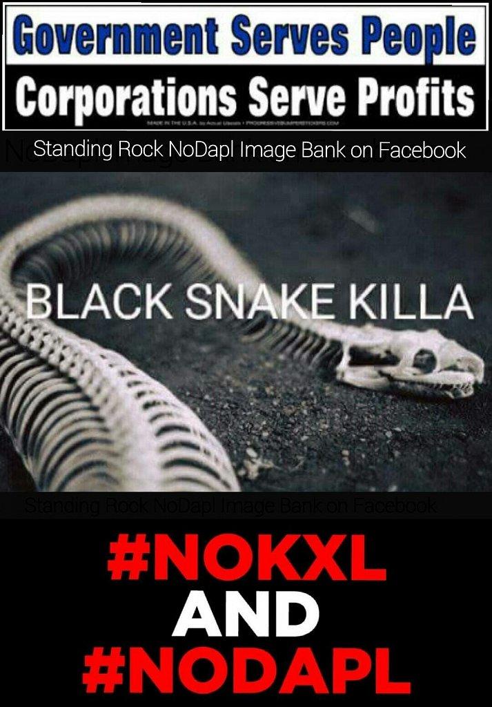 NoKXL